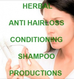 Herbal Anti Hairloss Conditioning Shampoo Formulation And Production