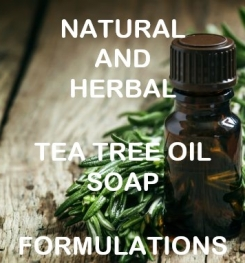 Natural And Herbal Tea Tree Oil Soap Formulation And Production