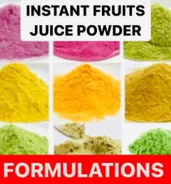 Instant Fruits Juice Powder Formulation And Production