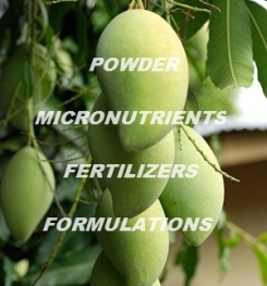 POWDER MICRONUTRIENTS FERTILIZERS FORMULATIONS AND MANUFACTURING PROCESS
