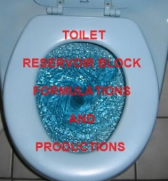 TOILET RESERVOIR BLOCK FORMULATION AND PRODUCTION PROCESS