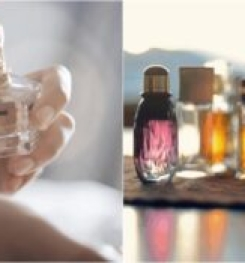Normal Perfume For Men And Women Formulation And Production