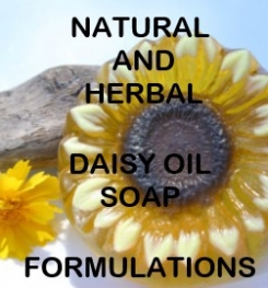Natural And Herbal Daisy Oil Soap Formulation And Production